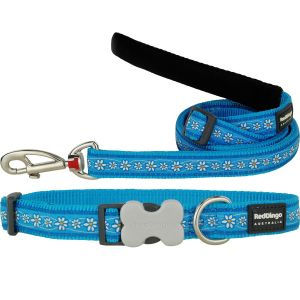 Daisy Chain Turquoise Collar or Leash