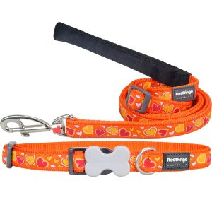 Breezy Love Orange Collar/Leash