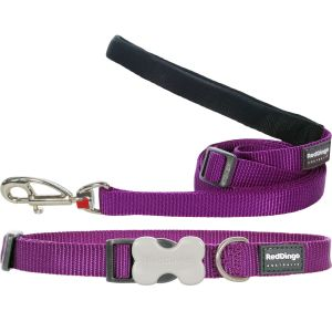 Classic Purple Collar or Leash or Harness