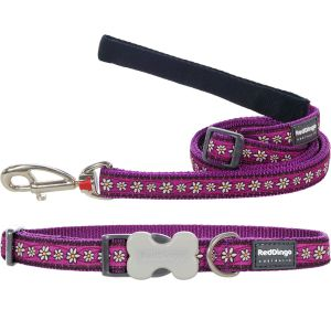 Daisy Chain Purple Collar or Leash or Harness